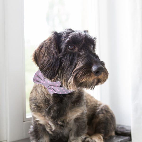 Collier Pimp Stardog Pink